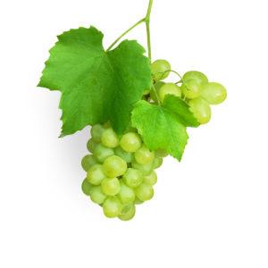 distribucion-uvas-blancas-frutas-ramirez